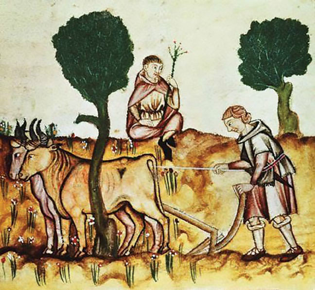 Medieval plowman and ox (c. 1300).