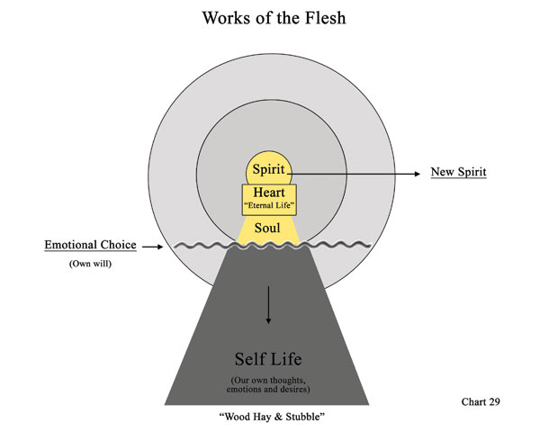 Chart 29: Works of the Flesh
